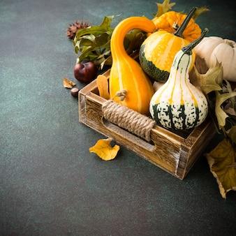 Herfst pompoen thanksgiving achtergrond
