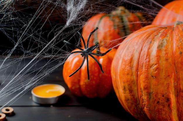 Herfst pompoenen, web en spin in het zwart