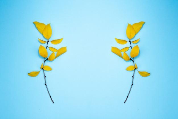 Herfst samenstelling, frame van bladeren. twee takken met gele bladeren, pruim. plat lag, bovenaanzicht, kopie ruimte