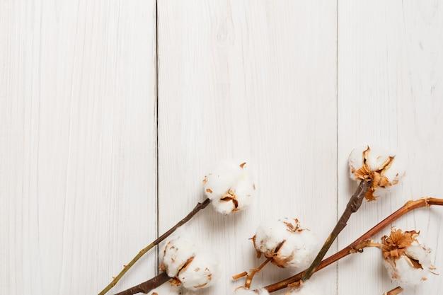 Herfst samenstelling. gedroogde witte pluizige katoenen bloem bovenaanzicht op wit hout. floral samenstelling