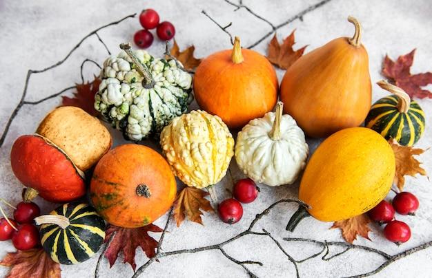 Herfst samenstelling gezellige herfst seizoen pompoenen en bladeren op betonnen achtergrond
