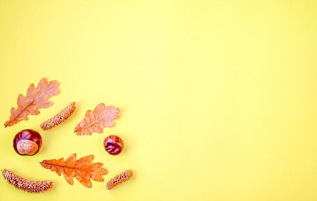Herfst samenstelling. herfst, droge eikenbladeren, kastanjes, kegels op een geel. dankzegging. bovenaanzicht, copyspace
