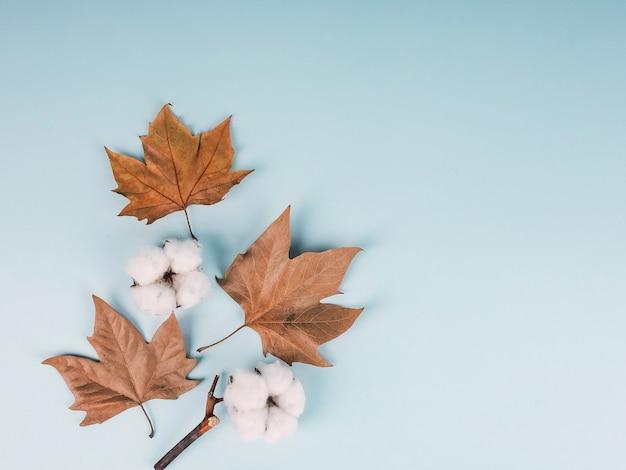 Herfst samenstelling. katoenen bloemen, gedroogde bladeren op blauw oppervlak. herfst, herfst concept. plat lag, bovenaanzicht.