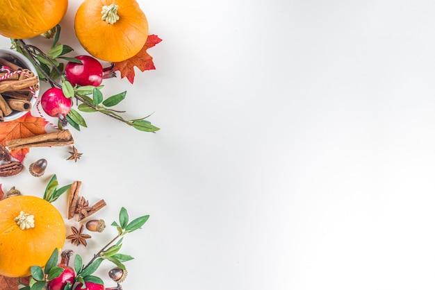 Herfst samenstelling, thanksgiving vakantie wenskaart. pompoen koken achtergrond, met herfst feestelijk decor, kleine pompoenen, kruiden, pecannoten, witte achtergrond kopie ruimte