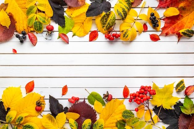Herfst samenstelling van gevallen bladeren
