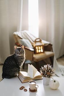 Herfst stilleven interieurdetails en een grappige kat op hygge achtergrond thuis