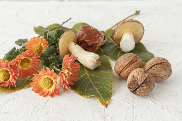 Herfst stilleven met paddenstoelen, groene bladeren en bloemen.