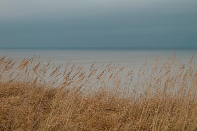 Herfst uitzicht op de zee op het baltische strand.