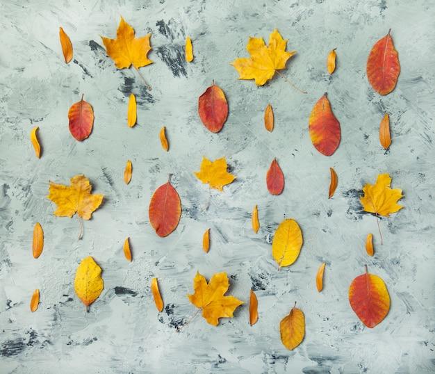 Herfst vallen plat lag bovenaanzicht