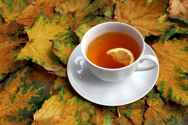 Herfst vergeelde esdoornbladeren en een wit kopje thee met citroen.