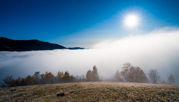 Herfst vroege ochtend en bevroren droog gras bedekt met witte mist onder de felle koude zon