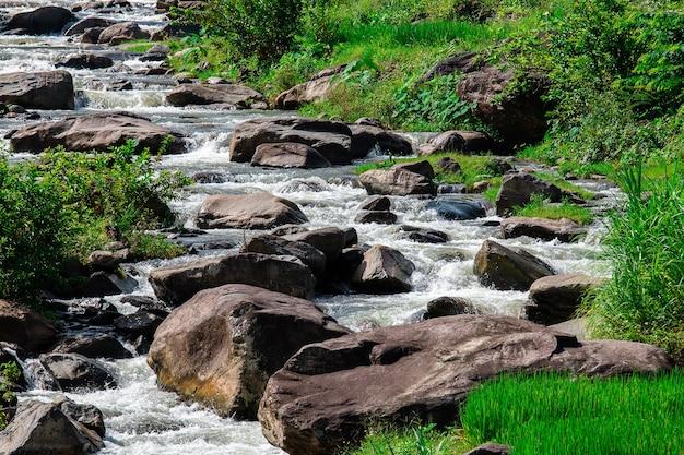 Herfst waterval stroom scène