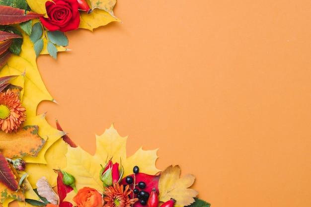 Herfstbessen, kleurrijke bladeren en rode rozen op oranje
