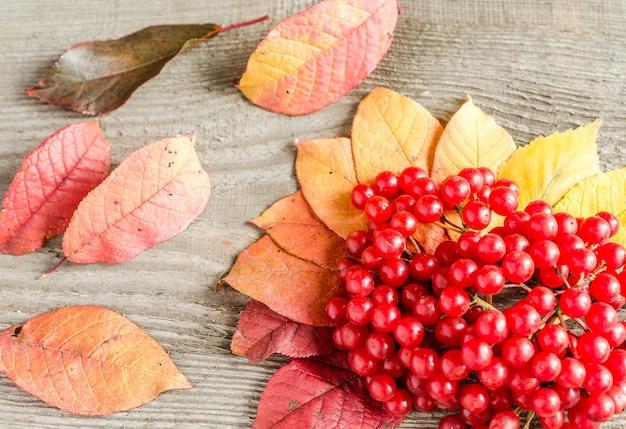 Herfstbladeren en bessen op houten tafel