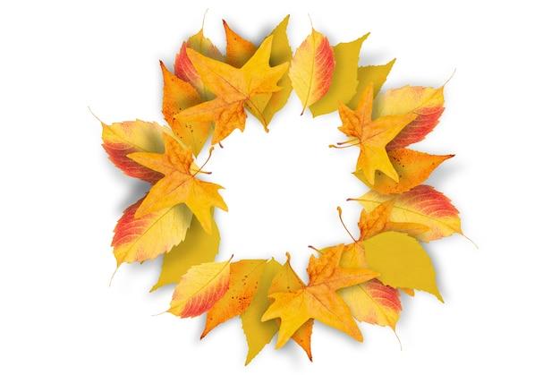 Herfstbladeren frame geïsoleerd op een witte ondergrond.