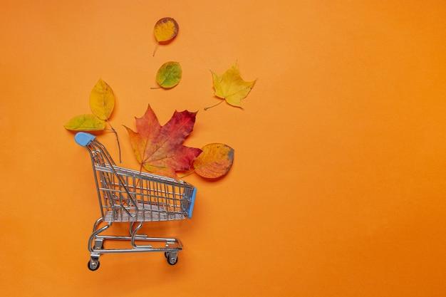 Herfstbladeren in boodschappenwagentje op oranje, plat leggen