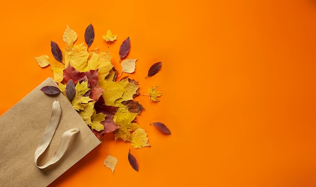 Herfstbladeren in een zak op een sinaasappel