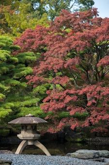 Herfstbladeren landschap met japanse tuin in japan