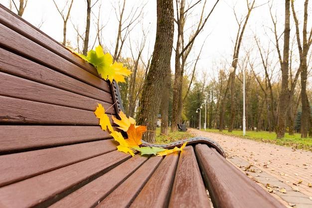 Herfstbladeren liggen op een bankje in een park, textuur. herfst esdoorn bladeren van verschillende kleur op de bank in een park.