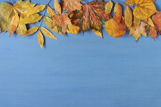 Herfstbladeren op blauw hout