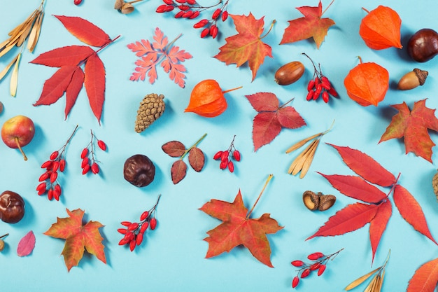 Herfstbladeren op blauw papier