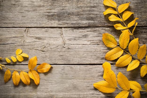 Herfstbladeren op een houten achtergrond