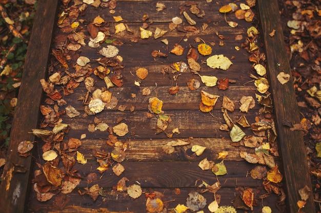 Herfstbladeren op een houten ondergrond pathway