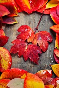 Herfstbladeren op hout
