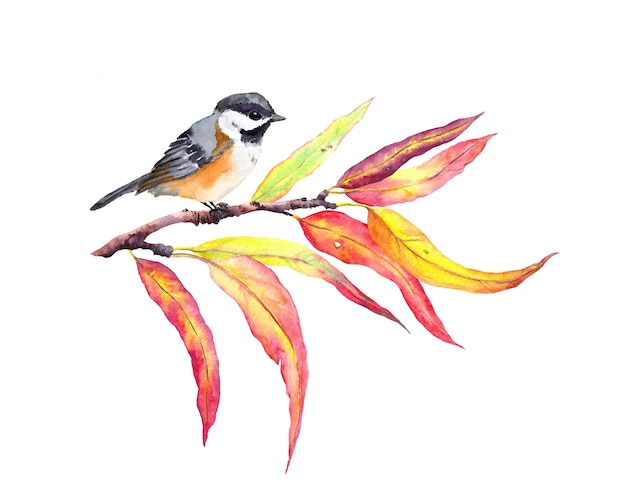 Herfstbladeren op tak met vogel. water kleur