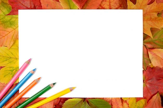 Herfstbladeren potloden en vel papier achtergrond
