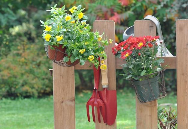 Herfstbloemen en -gereedschap