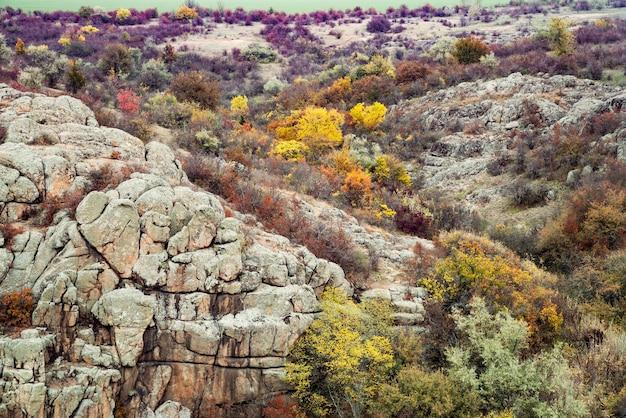 Herfstbomen en grote stenen rotsblokken rondom