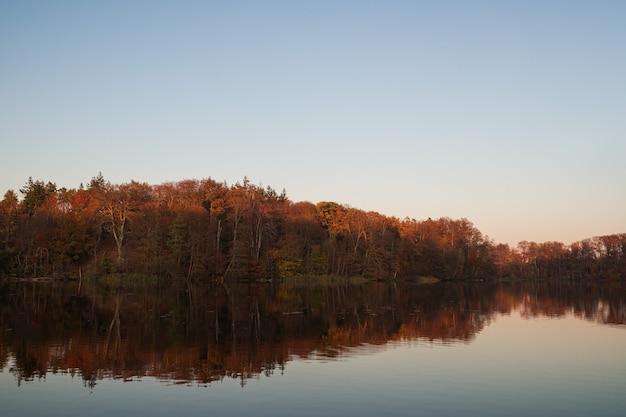 Herfstbos weerspiegeld op een meer