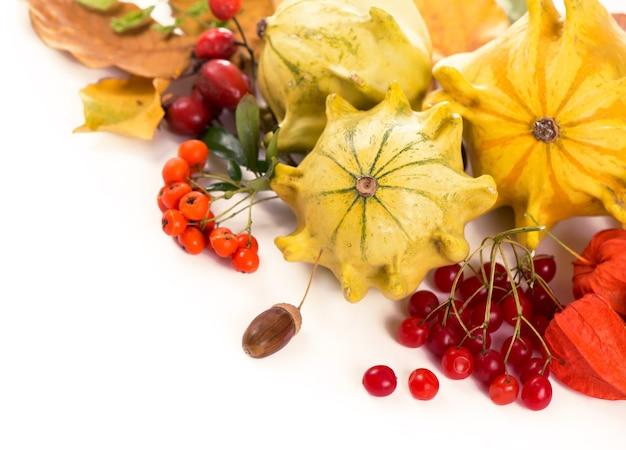 Herfstdecoratie gerangschikt met droge bladeren, pompoenen en meer, geïsoleerd op wit, groot formaat