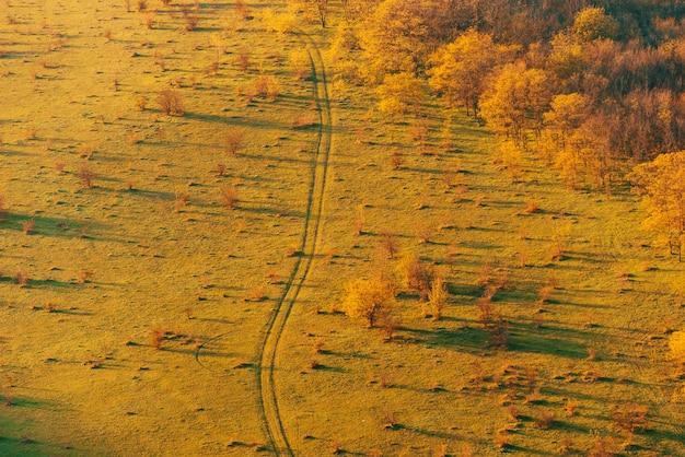 Herfstkleuren, mooi warm herfstlandschap met weg in het midden, platteland