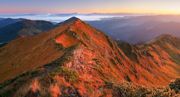 Herfstlandschap met wandelpaden op de bergkam. zonnige ochtend in de bergen. karpaten, oekraïne, europa