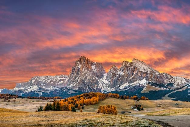 Herfstochtend in de bergen, landschap met besneeuwde toppen en heldere bomen