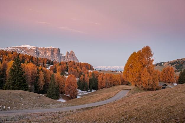 Herfstochtend in de bergen met besneeuwde toppen en heldere bomen