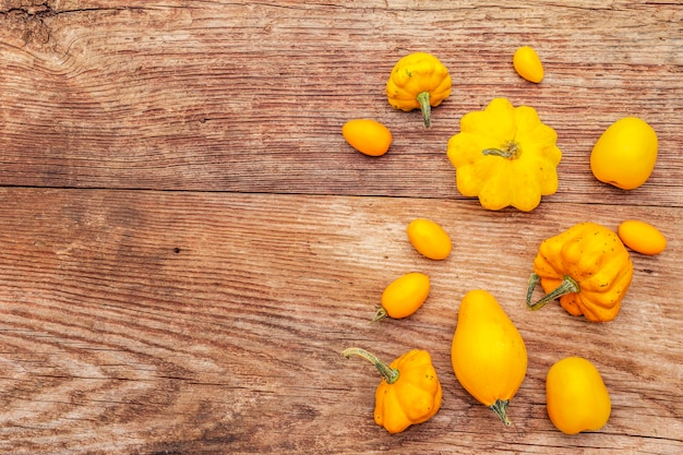 Herfstoogst groenten. assortiment van gele tomaten en pompoenen