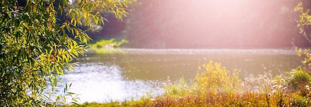 Herfstpanorama met rivier en vegetatie aan de oevers bij zonnig weer