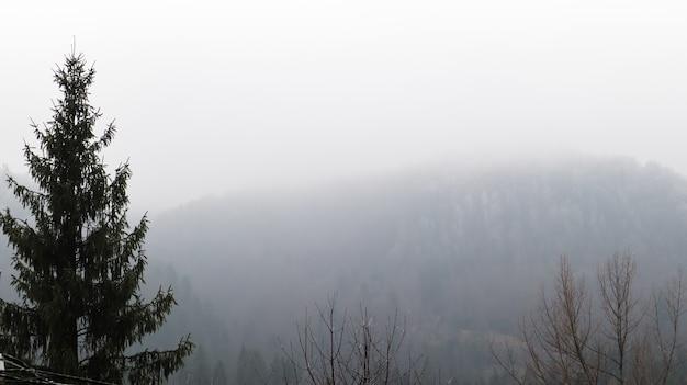 Herfstregen en mist op de bergheuvels. mistige herfst bos bedekt met lage wolken. oekraïne. vuren bosbomen op de heuvels van bergen die door de ochtendmist steken over herfstlandschappen.