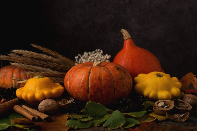 Herfstsamenstelling met seizoensgroenten, pompoen, gevallen bladeren, geschenken van de natuur en kegels