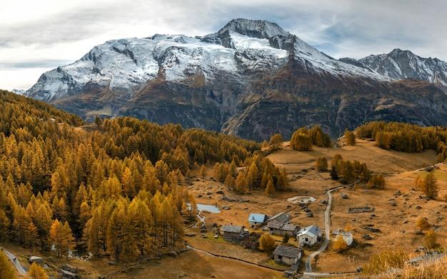 Herfstweide met grote bergen met bruine bomen