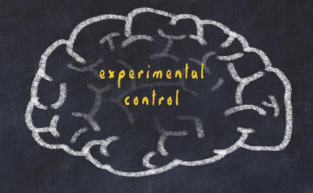Hersenen met inscriptie experimentele controle