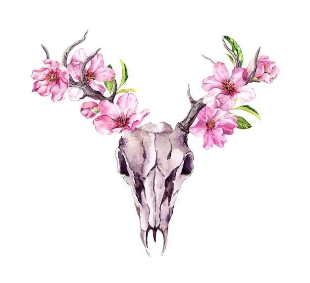 Herten dierlijke schedel met bloeiende roze bloemen, kersenbloesem. waterverf