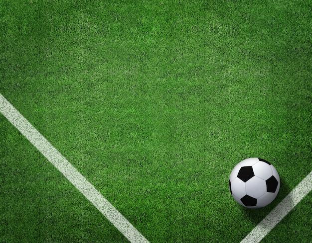 Het 3d teruggeven van voetbalbal met lijn op voetbalgebied.