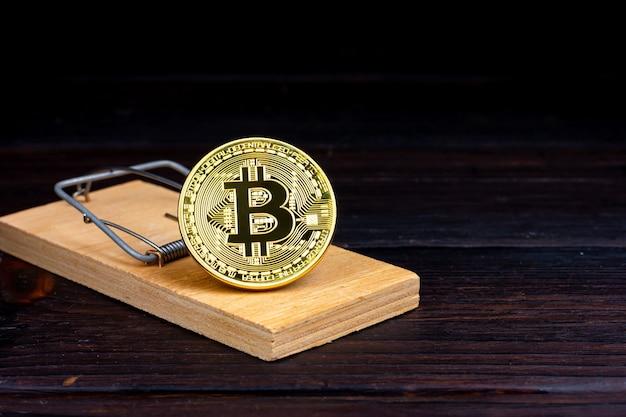 Het aas zit in een muizenval gouden bitcoin munt in een muizenval riskante investeringen