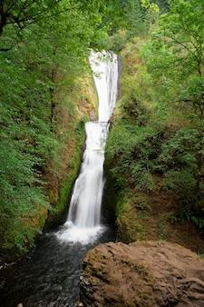 Het afgelegen waterval bespatten in pool in bos