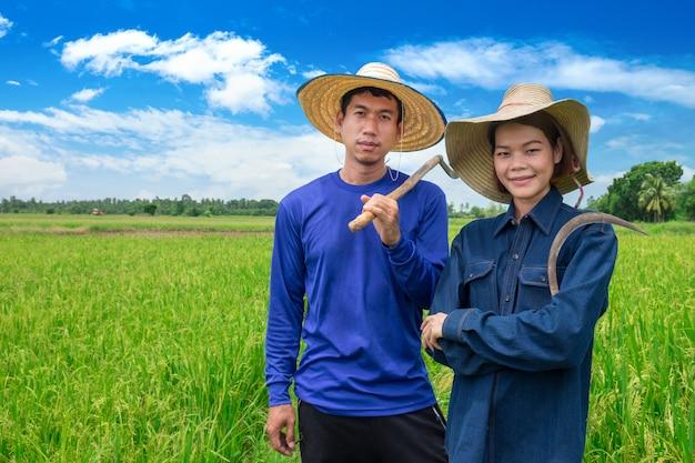Het aziatische glimlachpaar van landbouwers houdt hulpmiddelen en status bij rijstlandbouwbedrijf