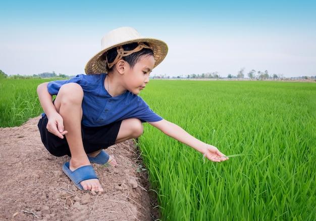 Het aziatische het bamboehoed van de jongenskleding spelen als rijst van de landbouwersinstallatie bij padieveld